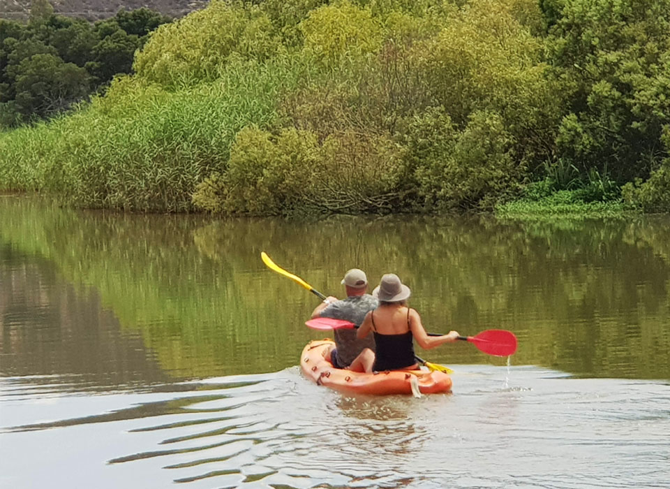 activities on the breede river